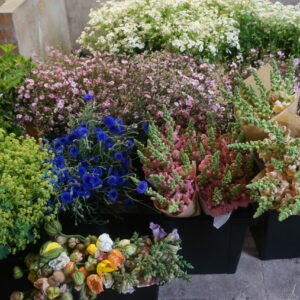 DIY bloemenemmers